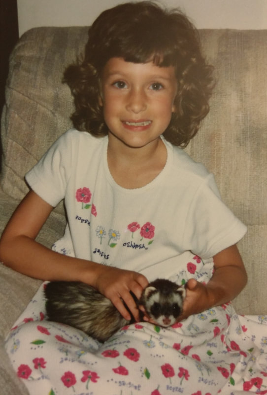 An 8 year old girl is holding a brown ferret in her lap while smiling